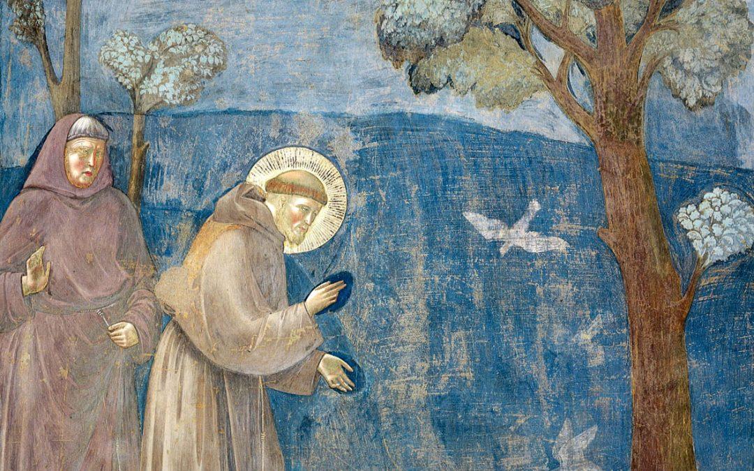 ECOLOGIE INTEGRALE, la question animale selon saint François